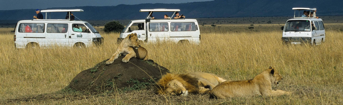 Kenya Safaris from Nairobi, Safaris out of Nairobi