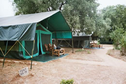Ndololo Safari Camp Tent